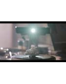 Scanner 3D Scanner 3D Einscan SE